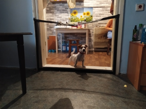 Pet Dog Gate Ingenious Mesh Magic Pet Gate For Dogs Safe Guard and Install Pet Dog Safety Enclosure Dog Fences Dropshipping photo review