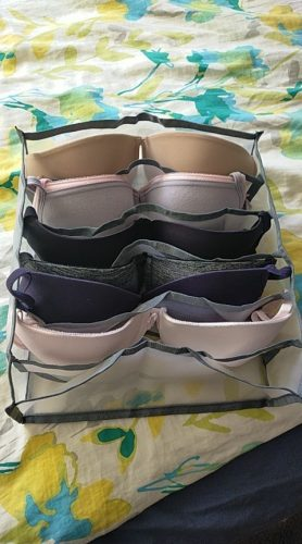 Underwear Storage Box Compartment photo review